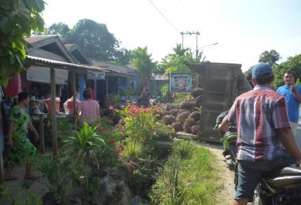 Truck Sawit Terguling Di Pemukiman Warga
