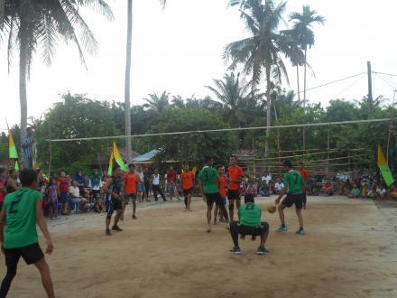 Sambut HUT RI ke-71 Desa Tanjung Harap adakan Turnamen Volly